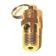 Schulz CSW60 Air Compressor safety valve